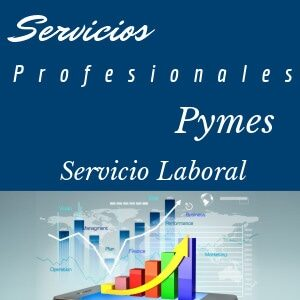 Laboral Pymes